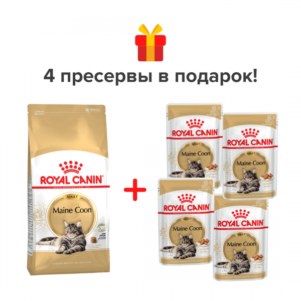Набор Royal Canin 2 кг + 4 пресервы Maine Coon Adult